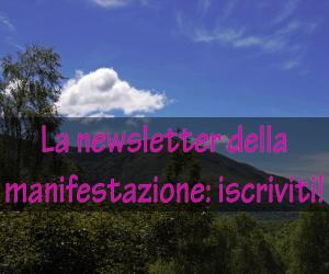 A_Newsletter